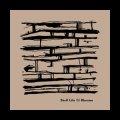 "Shelf Life ""Rheuma"" [CD-R]"