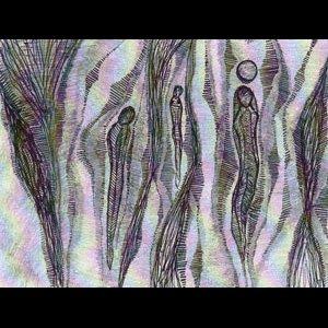 画像2: Trulofa Trio [2LP]