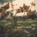 Stephen Vitiello With Eighth Blackbird [CD]