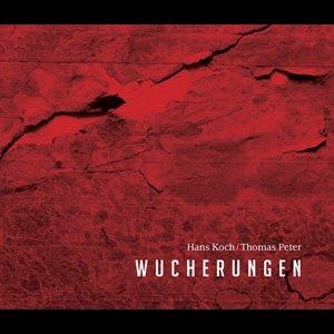 "画像1: Hans Koch | Thomas Peter ""Wucherungen"" [CD]"