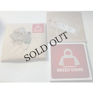 "画像3: Grizzly Steppe ""Adversary Space"" [CD]"