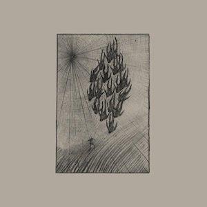 """画像1: Aine O'Dwyer """"Locusts"""" [LP]"""