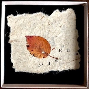 "画像4: øjeRum ""Nothing Is Meant To Be"" [6CD Box]"