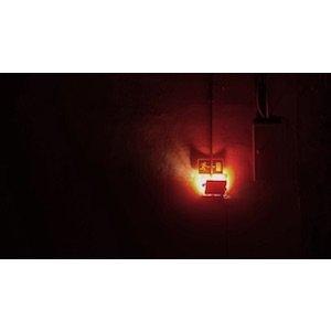 "画像2: Calum Gunn ""Monocosm"" [CD]"