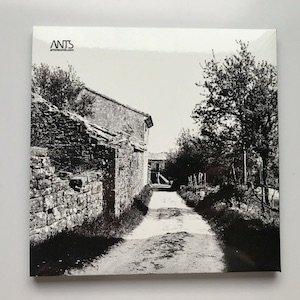"""画像3: Albert Mayr """"Brdo"""" [CD]"""