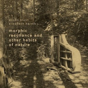 "画像2: Alison Blunt / Elisabeth Harnik ""Morphic Resonance And Other Habits Of Nature"" [CD]"