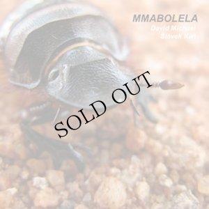 """画像1: David Michael / Slavek Kwi """"Mmabolela"""" [2CD]"""